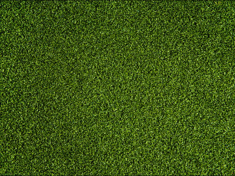 Putting green maple ridge golf course for Cheap green wallpaper